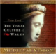 Jewel case design for 'The Visual Culture of Wales: Medieval Vision' (CD-ROM)